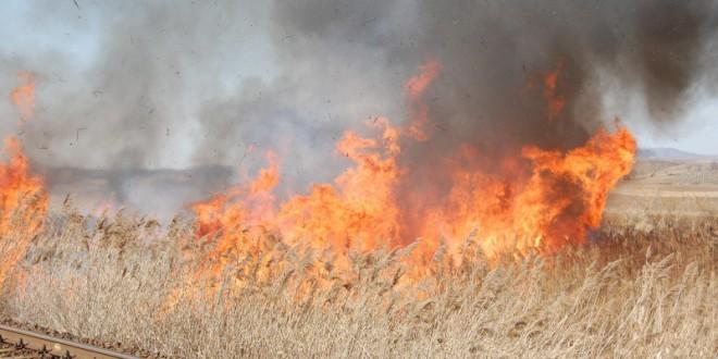 10 incendii de vegetaţie uscată în trei zile