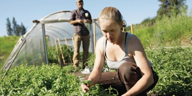 O fermieră din Tulgheş – la Congresul European al Tinerilor Agricultori