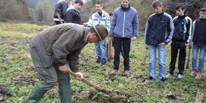 """Ocolul Silvic Topliţa Bilanţ: """"Luna Pădurii"""" 2014"""