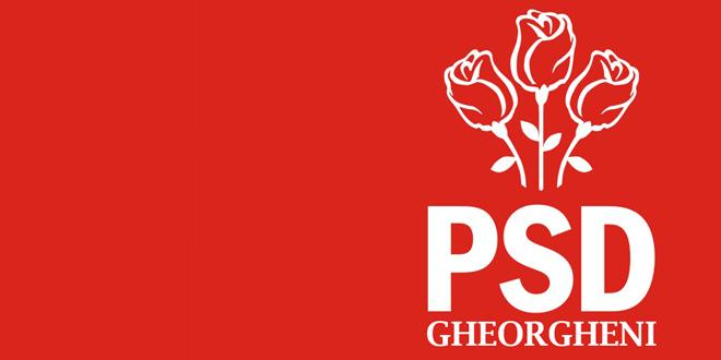 PSD Gheorgheni sesizează Prefectura cu privire la site-urile consiliilor locale