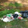 Harghita: Aproape 50 de tone de gunoi colectate după picnicurile de 1 Mai; operaţiunea nu s-a încheiat