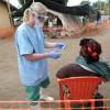Alertă mondială: Virusul mortal Ebola s-ar putea întinde pe toată planeta!