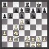 ŞAH: Aşa vă place Botvinnik? (3)