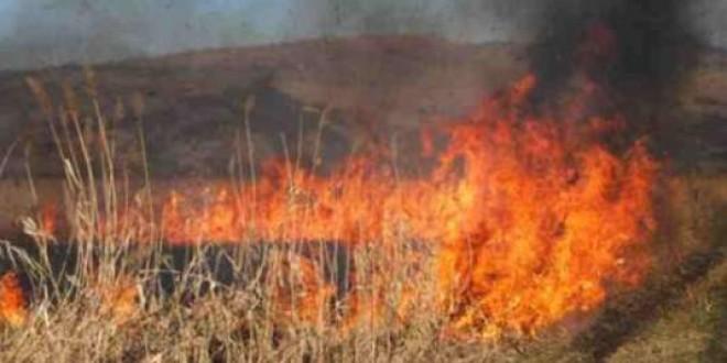 Primarii din judeţ, atenţionaţi de subprefect să ia măsurile legale pentru prevenirea incendiilor de vegetaţie uscată în perioada caniculară