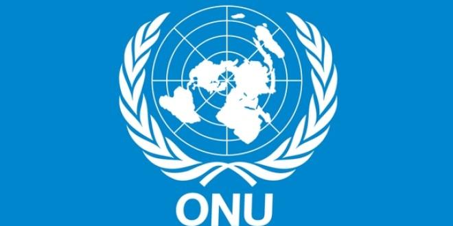 România prezidează Conferinţa Părţilor la Convenţia ONU privind combaterea criminalităţii organizate transfrontaliere