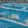 Concurs de înot la Miercurea-Ciuc