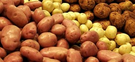 Preţul cartofului din import a stabilit şi plafonat preţul de vânzare al cartofului autohton