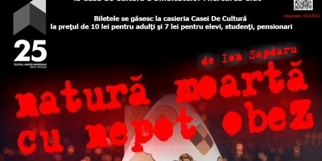 """Invitaţie la teatru: """"Natură moartă cu nepot obez"""", de Ion Sapdaru"""