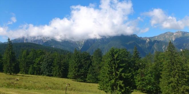 Dosarul şi procesul prin care Asociaţia Composesorală Bunurile Private din Ciuc cere retrocedarea a mii de hectare de pădure se reîntorc la Judecătoria Topliţa