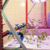 """Un sistem de cultură aquaponics a fost dat în folosinţă la Liceul """"Venczel Jozsef"""" din Miercurea-Ciuc"""