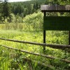 Idei de evadare în natură: Mlaştina Dumbrava Harghitei şi Piatra Colibei