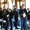 La bursa locurilor de muncă pentru absolvenţi: patruzeci şi doi de angajatori au oferit un total de 378 locuri de muncă vacante