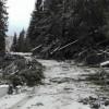 Vântul puternic a afectat circulaţia rutieră şi alimentarea cu energie electrică