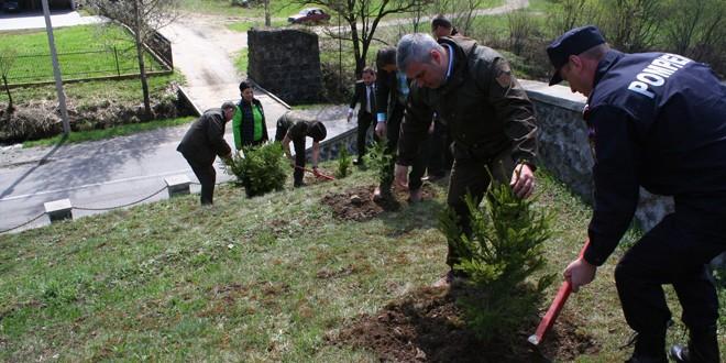 """""""Pădurea Centenar"""": Puieţi de molid plantaţi la Monumentul-mausoleu de la Gura Secului"""