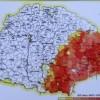 Zeno Millea: Pericolul românesc la început de secol XX
