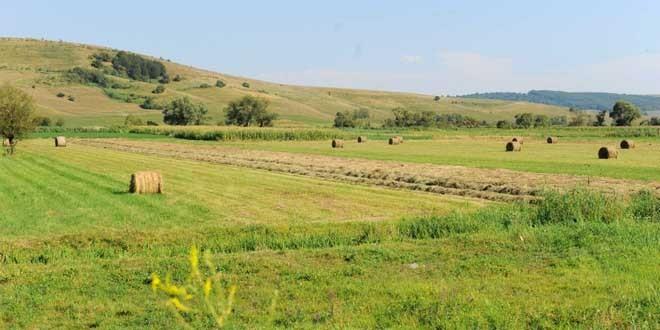 Fermierii vor putea beneficia de câte 15.000 de euro pentru dezvoltarea exploataţiilor agricole de mici dimensiuni