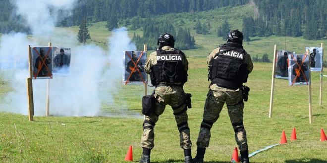 14 echipe de luptători din structurile de acţiuni speciale din România, Republica Moldova şi Slovacia, la un stagiu de pregătire la Miercurea Ciuc