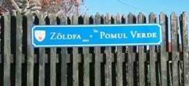 Primarul Ciucului, obligat de instanţă să schimbe toate plăcuţele cu denumirile străzilor din municipiul reşedinţă de judeţ