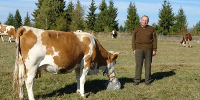 <h6><i>Sărbătoare pe Pârâul Gălăuţaşului</i></h6>Renumitul crescător de animale, Ioan Groza – 50 de ani de păstorit!