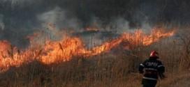 Neobişnuit: în primele două luni ale anului au fost şase incendii de vegetaţie uscată în judeţ