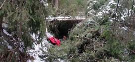 Mai mult de jumătate din traseele turistice din judeţ, afectate de căderile de arbori