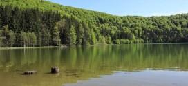 """Dr. Máthé István despre Lacul Sfânta Ana: """"Vorbim deja despre un lac eutrof, care tinde spre hipertrof, care devine de fapt un heleşteu"""""""
