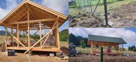 Construcţie ilegală, descoperită într-o arie protejată de lângă Miercurea Ciuc