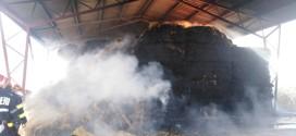 Incendiu la depozitul de paie al unei ferme de pui din oraşul Cristuru Secuiesc