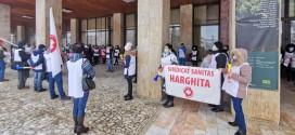 Zeci de angajaţi din sănătate au pichetat Prefectura