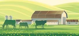 A început Recensământul General Agricol şi în Harghita