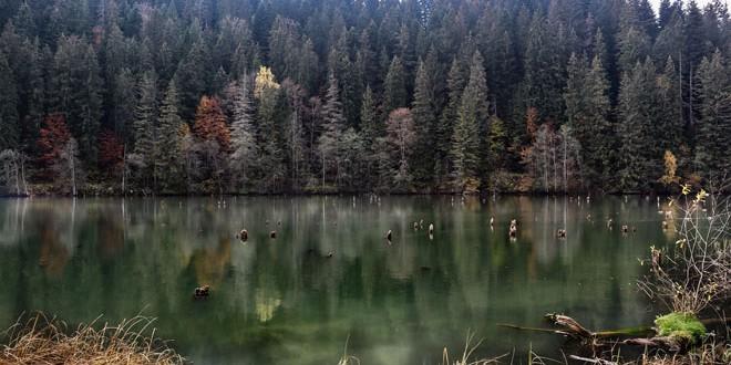 Harghita şi Galaţi au cel mai bun aer din România; Covasna şi Ilfov, cele mai poluate judeţe