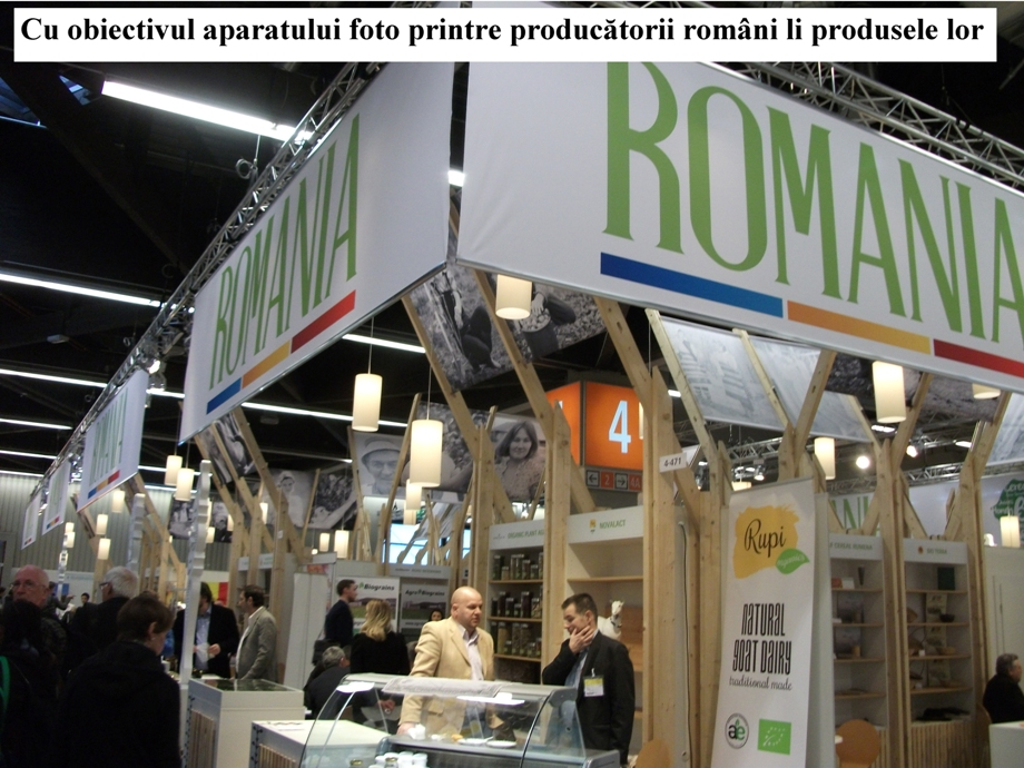 roman 33