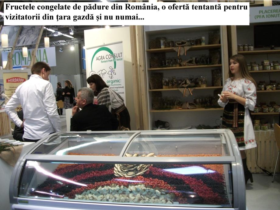 roman 55