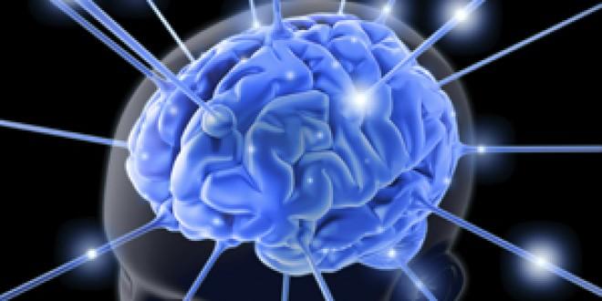 Folosesc oamenii doar 10% din creier? Un profesor de la Cambridge spune purul adevăr