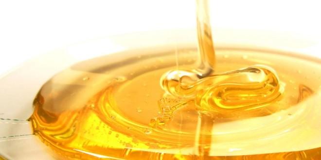 Harghita: Cea mai scăzută producţie de miere din ultimii 50 de ani