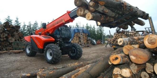 Direcţia Silvică a vândut aproximativ 80% din cantitatea de masă lemnoasă aprobată pentru 2015