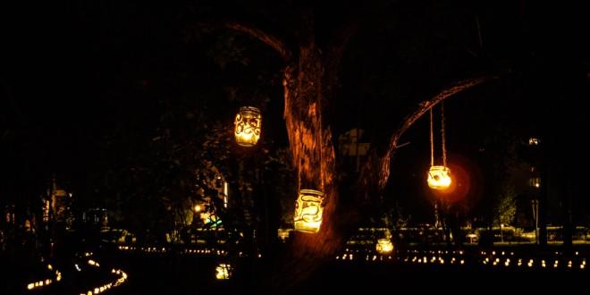 Festivalul Luminii sau redescoperirea frumuseţii lucrurilor mărunte