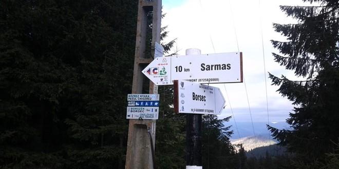 Traseele turistice afectate de căderile de arbori, reabilitate de salvamontişti