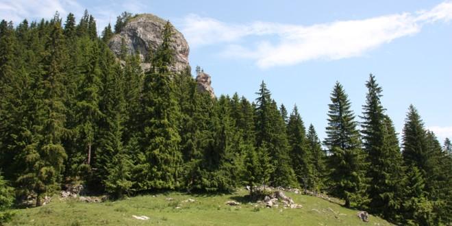Idei de evadare în natură: Pietrele Roşii, Tulgheş