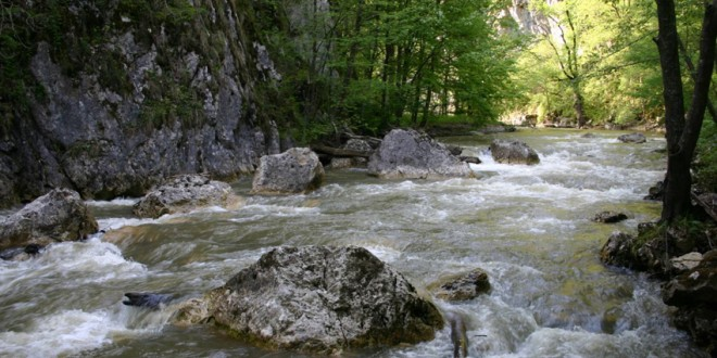 Idei de evadare în natură: Cheile Vârghişului