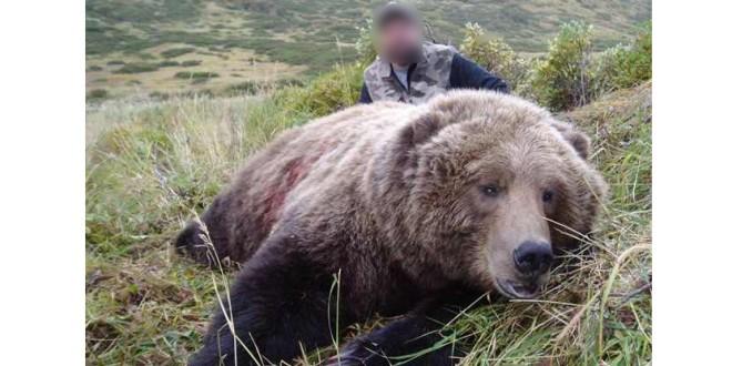 Despre urşi şi vânători (I)