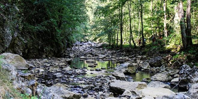 O treime din suprafaţa judeţului are statut de sit Natura 2000