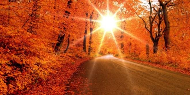 Vara din noiembrie: temperaturi record înregistrate la staţiile meteo din Harghita