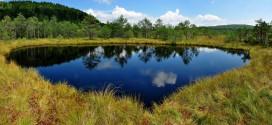 Peste 220.000 de hectare de arii naturale protejate în Harghita