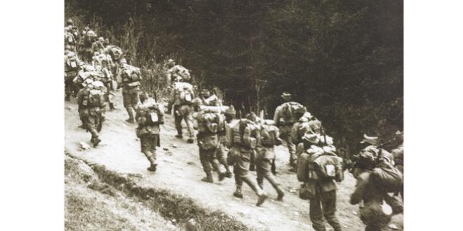 """<h5><i>Trianon 100</i></h5>Un document maghiar, din toamna anului 1916, despre """"efectele intrării trupelor române în Transilvania şi comportarea lor bună în contradicţie cu cea a trupelor germane"""""""