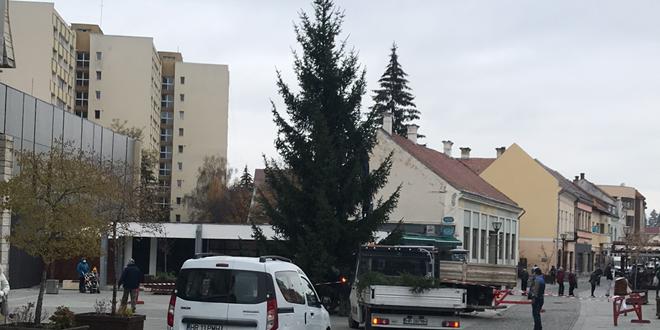 <h5><i>Noutăți în iluminatul festiv din Miercurea Ciuc:</i></h5> Coroana de Advent va fi amplasată în Parcul Central, în oraș vor fi montați doi brazi de Crăciun, iar iluminatul se va extinde și în alte zone