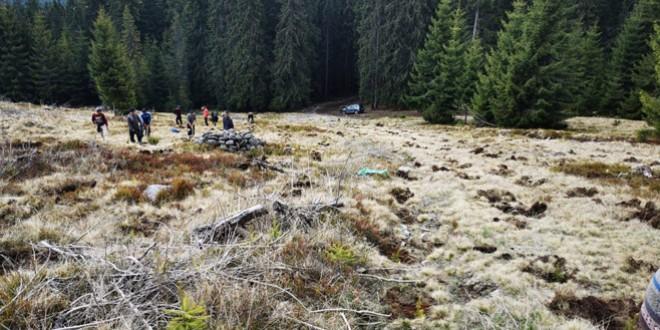 <h5><i>Luna plantării arborilor 2021:</i></h5> Direcţia Silvică Harghita va împăduri o suprafaţă de 166 de hectare, cu 737.000 puieţi, iar regenerările naturale vor acoperi 117 ha