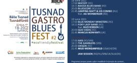 <h5><i>Băile Tuşnad, 18-20 iunie:</i></h5> Tuşnad Gastro Blues Fest – ediţia a II-a