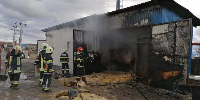 Incendiu la o firmă de prelucrare a lemnului