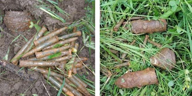Elemente de muniție, găsite în Plăieșii de Jos